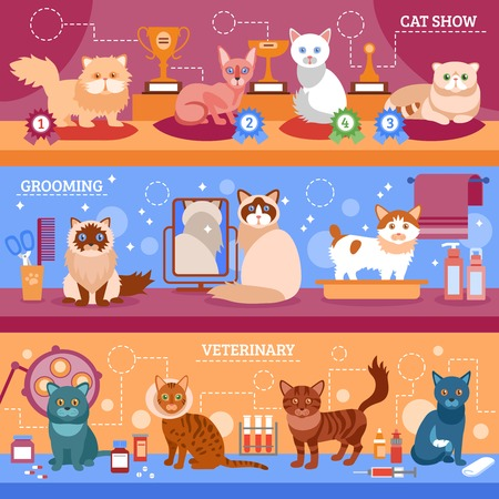 calico: Cats banner horizontal set with flat grooming and veterinary elements isolated vector illustration