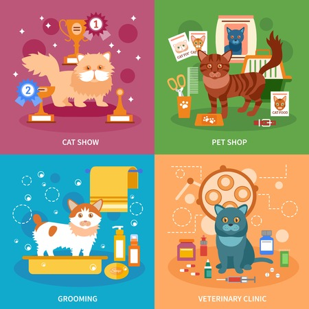 bombay: Cats design concept set with pet grooming and veterinary clinic flat icons isolated vector illustration