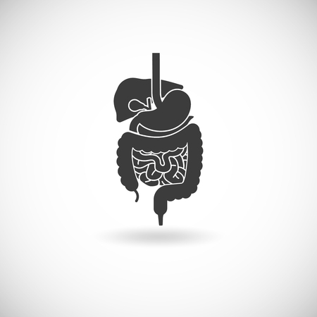 digestive disease: Digestive system with liver stomach and intestine black white flat vector illustration