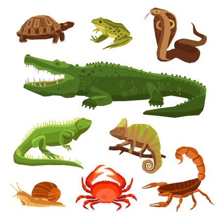 cartoon scorpion: Reptiles and amphibians decorative set of cobra crocodile turtle snail scorpion crab icons in cartoon style isolated vector illustration