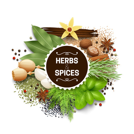 titles: Illustration of set with different types of herbs and spices vector illustration Illustration
