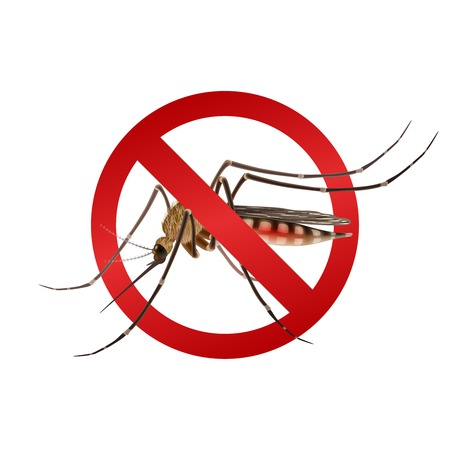 stinging: Realistic mosquito in red stop sign epidemic virus prevention concept vector illustration