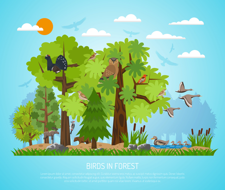 Forest poster with different trees pond various birds and few animals on blue background flat vector illustration