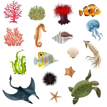 algas marinas: Conjunto de iconos de dibujos animados la vida del mar con la cáscara de algas ilustración vectorial de coral peces invertebrados