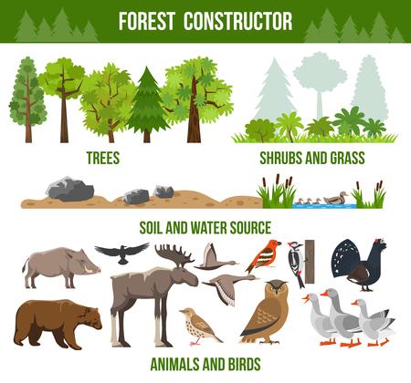 kuropatwa: Las konstruktor plakat z drzew krzewów i trawy zwierząt i ptaków pakiety źródłowe płaskiej Izolowane ilustracji wektorowych Ilustracja