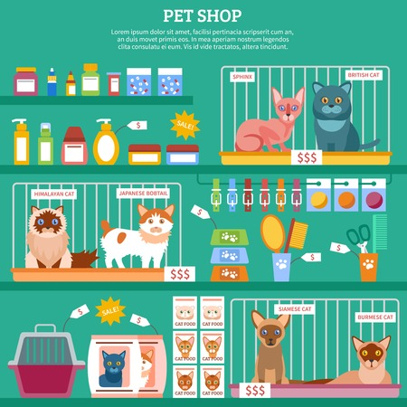 bengal: Pet shop concept with flat cat breed icons vector illustration