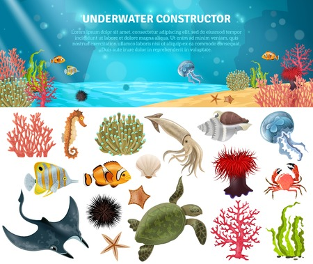 Sea life animals plants and landscape cartoon icons constructor set vector illustration