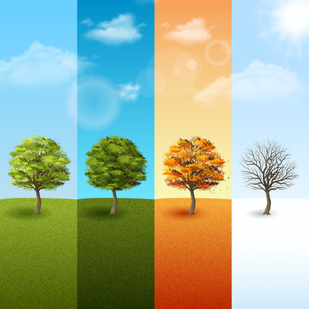 four season: Four season vertical banner set with trees on blue sky background vector illustration