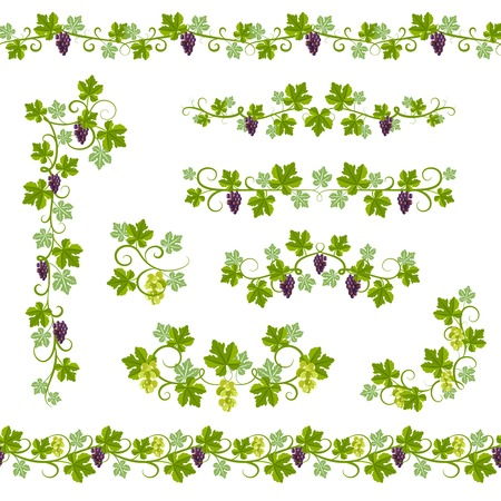 Seamless Background Pattern with vine branches and grape elements vector illustration