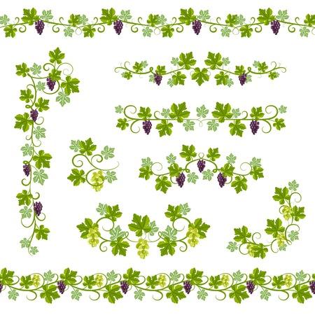 vid: Patrón de fondo sin fisuras con las ramas de vid de uva y elementos de ilustración vectorial