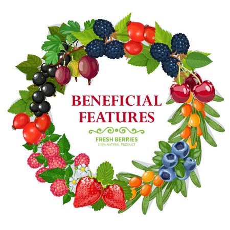 grosella: bayas silvestres y de jardín frescas cosechadas guirnalda ilustración de color natural resumen de antecedentes vector marco decorativo de impresión Vectores