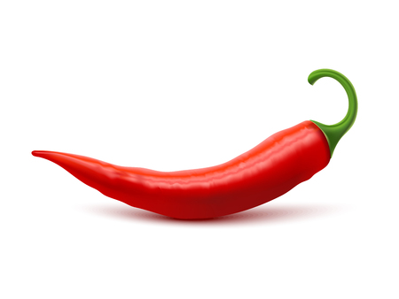 chili pepper: Red hot natural chili pepper pod realistic image with shadow for culinary products and recipes vector illustration Illustration