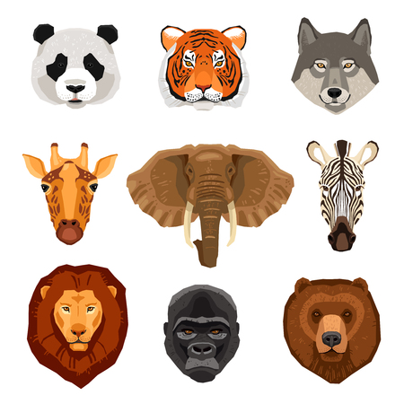 mixed forest: Images set of wild animals portraits drawn in flat style isolated vector illustration