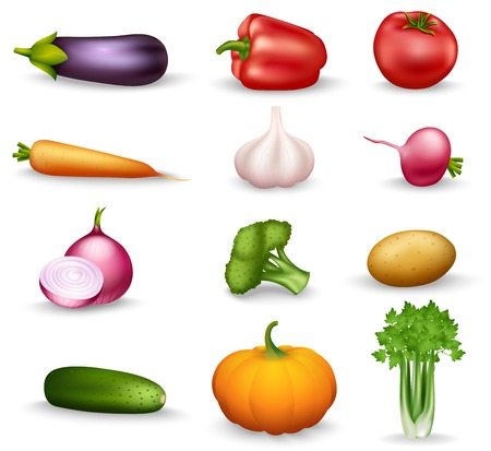 garlic: Realistic vegetable colorful isolated icons on white background with onion radishes broccoli parsley carrots garlic vector illustration Illustration