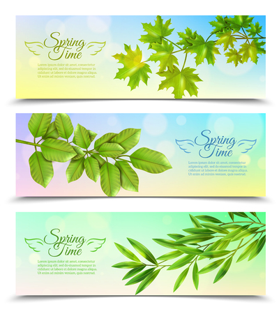 deciduous: Three horizontal banners with green branches of deciduous trees in sun rays background flat vector illustration