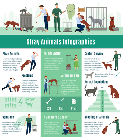 stray: Stray animals infographics set with the calculation value on veterinary services population number of animals from a shelter who gained home vector illustration