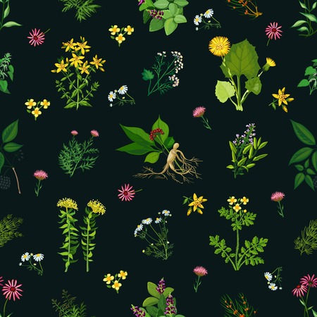 nettle: Seamless color pattern with dark background depicting different medicinal herbs vector illustration