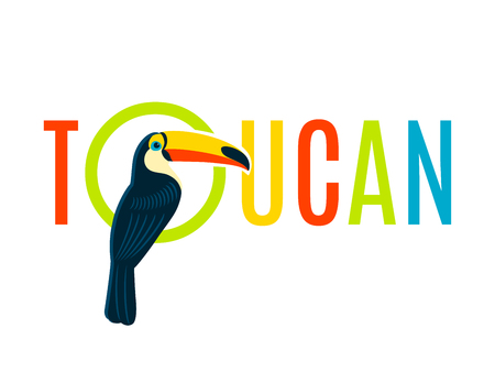 nameplate: Toucan bird colorful nameplate design for boards tags labels and recreation areas names flat banner vector illustration Illustration