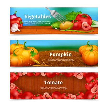 greengrocery: Three colorful horizontal banners with vegetables and greengrocery for salad pumpkin in field and tomato frame vector illustration