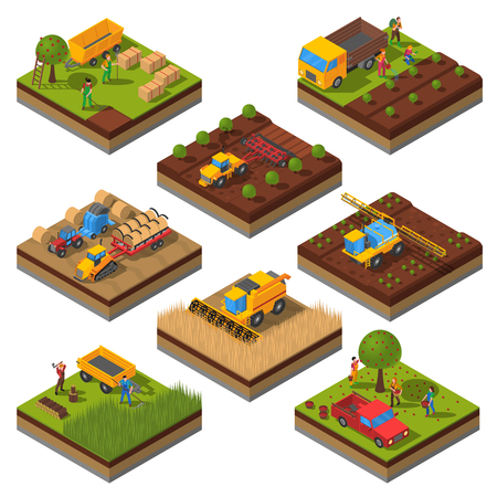 harvesting: Isometric set with isolated plates of fields and agricultural machines harvesting and people cropping vector illustration