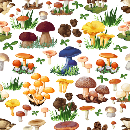 Mushroom seamless pattern with forest wild species  so as suillus puffball russula chanterelle shiitake morel truffle honey fungus cartoon vector illustration