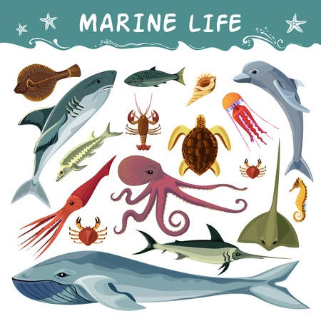 inhabitants: Marine inhabitants cartoon decorative icons set with dolphin shark sea turtle octopus crab squid isolated flat vector illustration