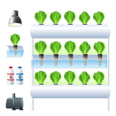 수경 법 시스템 아이콘 장비 및 식물 재배 벡터 일러스트 레이 션에 대 한 필요한 도구를 사용 하여 설정