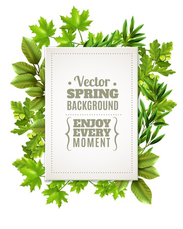 foreground: Decorative green frame with spring leaves and branches of deciduous trees and white rectangle with text in foreground vector illustration Illustration