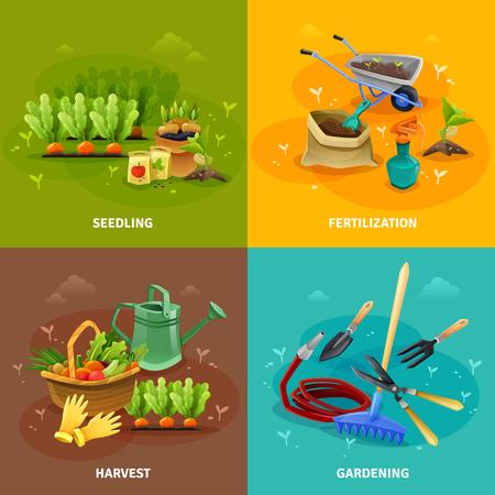 concept Jardinage 2x2 ensemble de compositions de semis et de récolte avec des outils agricoles pour la formation de lits de jardin fertilisation et arrosage illustration vectorielle