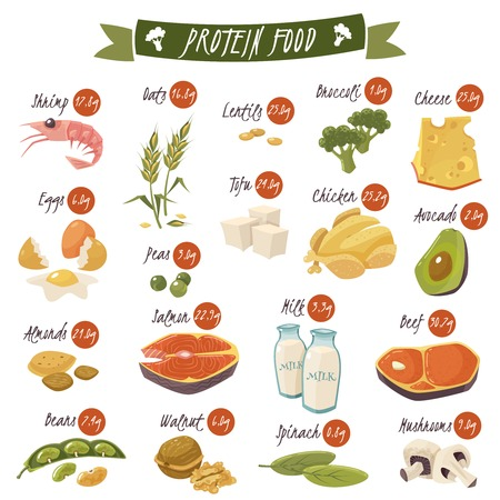 Best protein food icons collection for healthy diet with salmon beans almonds and chicken isolated vector illustrations Stok Fotoğraf - 57720282
