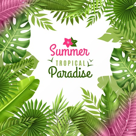 Summer tropical paradise decorative frame or background dezign with opulent rainforest plants foliage composition vector illustration Illustration