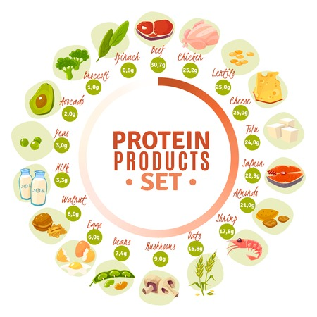 progressive: High protein products progressive circle diagram with actual content data from spinach to beef flat vector illustration
