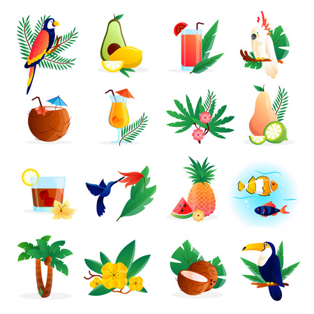 tropical flowers: Tropical icon set with cocktails flowers fruits and birds vector illustration Illustration