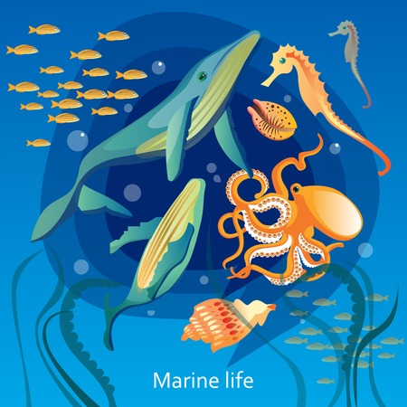 cartoon seahorse: Ocean Underwater Life Background. Sea Underwater Life Vector Illustration. Marine Underwater Life Design. Underwater Life Cartoon Decorative Symbols. Illustration
