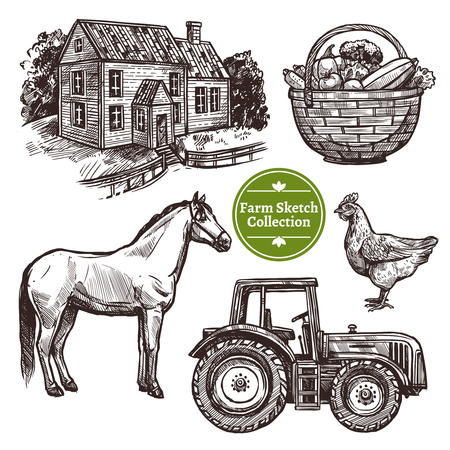 horse drawn: Black and white farm hand drawn sketch set with horse hen farmhouse tractor and basket with vegetables on white background isolated vector illustration