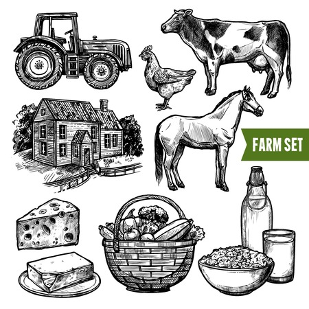 farmhouse: Black and white organic farm set with healthy food farm animals tractor and farmhouse on white background sketch hand drawn isolated vector illustration Illustration