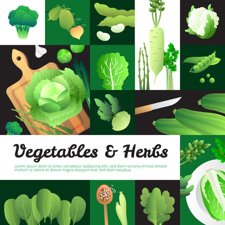 cabbage: Vegetarian food banners composition poster with organic fresh  cabbage and green vegetables on cutting board vector illustration
