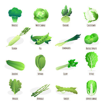 Green vegetables flat icons collection with broccoli spinach pea pod cabbage and celery abstract isolated vector illustration