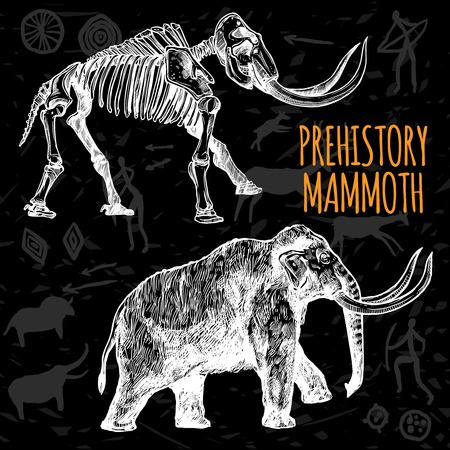 mammoth: Sketch hand drawn mammoth and its skeleton chalkboard on dark background with rock paintings isolated vector illustration