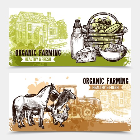 organic farming: Organic farming horizontal banners with healthy and fresh food farmhouse and farm animals on white background sketch hand drawn isolated vector illustration Illustration