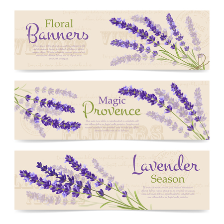 provence: Advertising horizontal banners floral provence and seasons with branch of lavender flowers on seamless background vector illustration