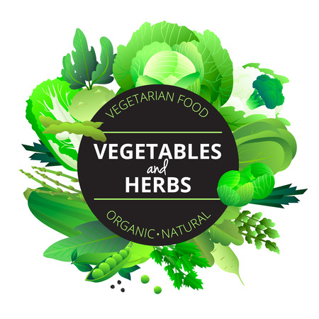 courgette: Natural organic vegetables and herbs round frame with cabbage courgette celery and pea green abstract vector illustration