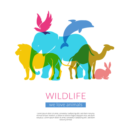 incorporation: Wildlife animals and birds flat colorful silhouettes composition poster with elephant lion eagle and camel vector illustration