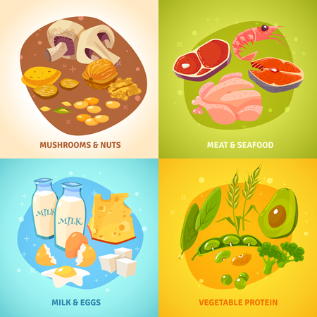 protein food: Protein rich food concept 4 flat icons square banner with dairy products meet poultry abstract isolated vector illustration