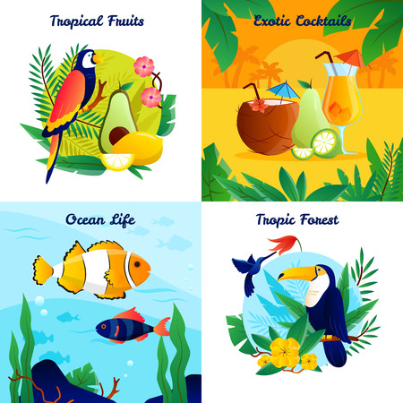 tropical forest: Tropical design concept with fruits exotic cocktails ocean life vector illustration