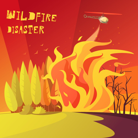 wildfire: Color cartoon illustration wildfire disaster depicting burning forest vector illustration Illustration