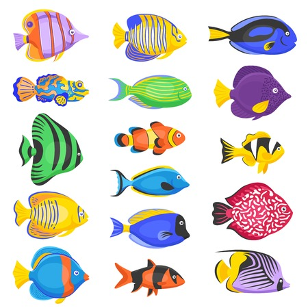 Exotic tropical fish set in different shapes and colors flat isolated vector illustration Illustration