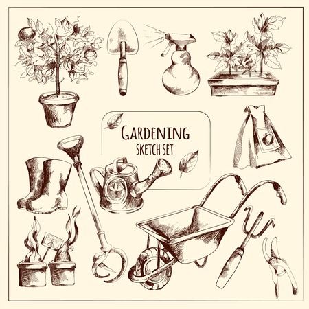 flowerpot: Gardening instruments sketch set with seeds flowerpot fork isolated vector illustration