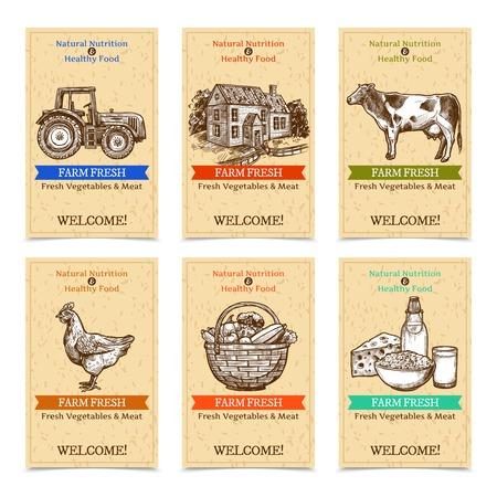 6 개의 수직 농장 태그 환영 건강 한 음식 농장 동물 배너 질감 된 베이지 색 배경 스케치 손으로 그려 격리 된 벡터 일러스트와 함께 트랙터 농가