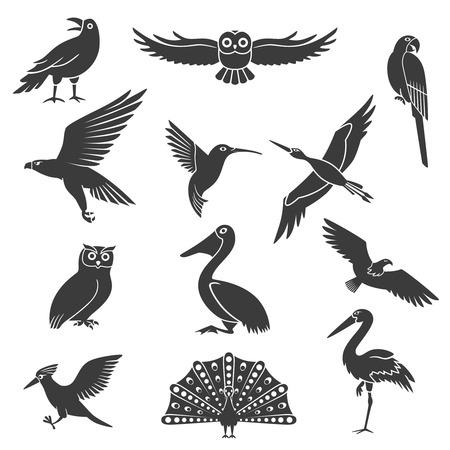 soaring: Stylized wild and exotic birds silhouettes black icons collection with pelican soaring eagle and peacock isolated vector illustration